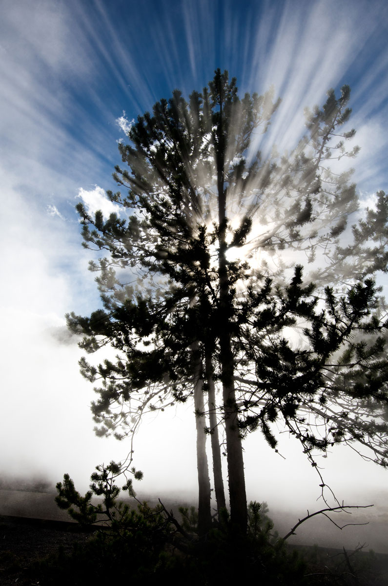 09-23-13-Yellowstone-078778