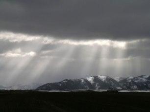 Snowy-Sunrays